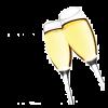 champagne - Illustrations -