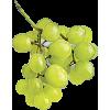 grožđe - フルーツ -