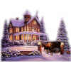 house in snow - Buildings -