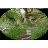 Nature Priroda - Nature -
