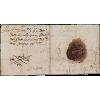 old letter - Illustrations -