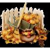 pumpkins - Ilustracje -