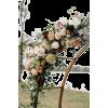 wedding flowers - Pflanzen -