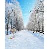 winter - Hintergründe -