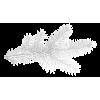 winter branch white - Artikel -