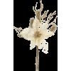 winter flower - Illustrations -