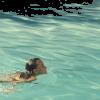 woman in water photo - Uncategorized -