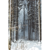 wood winter photo - Uncategorized -