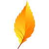 yellow leaf - Plantas -