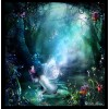 fairy - 北京 -