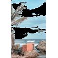 Daiscat - Beach - Uncategorized -