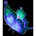 FrazzledKat1 - Butterfly - Uncategorized -