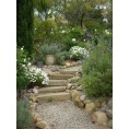 Bev Martin - Garden Background - Uncategorized -