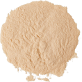 cilita  -  Hourglass - Cosmetics -
