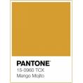 Montse Gallardo - Pantone 15-0960 Mango Mojito - Uncategorized -