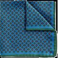 Maria Kuroshchepova - Pocket square (Charles Tyrwhitt) - Tie -