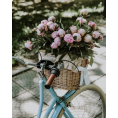 HalfMoonRun - basket of flower photo - Uncategorized -