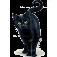 Eva Chasioti  ex-polyvore @evachasioti - cat - Uncategorized -