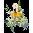 cilita  - cosmetic - Parfumi -