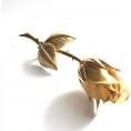 beleev  - gold rose - Uncategorized -