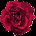 jessica - Brooch - Jewelry -