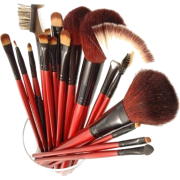 Shany Professional Cosmetic Brush Set with Pouch (Color May Vary), 12 Count - Cosmetics - $12.99