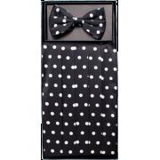 Boys Black and White Polka Dot Cummerbund and Bow Tie Set - Tie - $19.95