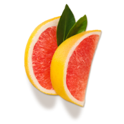 Citrus - Frutas -