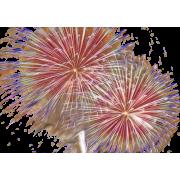 Fireworks - Ilustracije -