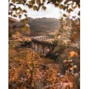 Glenfinnan Viaduct - Priroda -