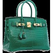 Green Alligator Bag - Hand bag -
