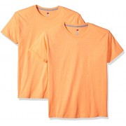 Hanes Men's 2 Pack X-Temp Performance T-Shirt - Shirts - $10.01