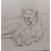 Lion - Background -