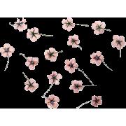 Pink Flowers - Plantas -