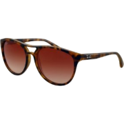 Ray-Ban Brad Sunglasses Rb4170 865/13 Rubberized Havana Brown Gradient - Sunglasses - $92.67