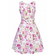 Ruiyige Women Vintage 1950s Spring Garden Party Dress For Women Sleeveless Rose Print - Dresses - $9.99  ~ £7.59