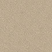 Transparent paper - Background -