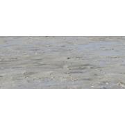 Transparent seaside - Nature -
