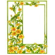 Yellow flovers - Frames -