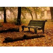 Autumn - 北京 -