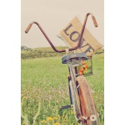 bicycle love - Background -