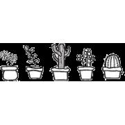 cactus doodle plants - Plantas -