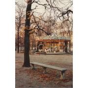 carousel in Paris - Priroda -