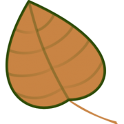 Dks - Biljke -