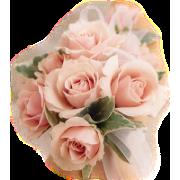 flores - Pflanzen -