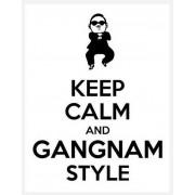 gangam style - Meine Fotos -