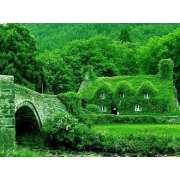 green houses - Edificios -