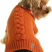 Dog1 - Animals -