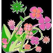 Flowers - Plants - 29,00kn  ~ $4.57