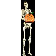Skeleton And Pumpkin - Illustrations -